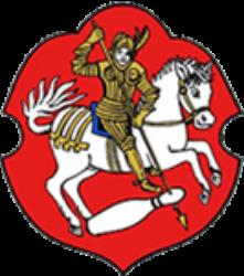 BSC Bensheim 08 e.V.
